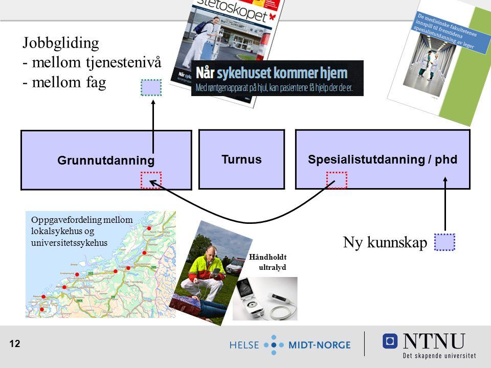 12 Turnus Grunnutdanning Spesialistutdanning / phd Jobbgliding - mellom tjenestenivå - mellom fag Ny kunnskap Oppgavefordeling mellom lokalsykehus og