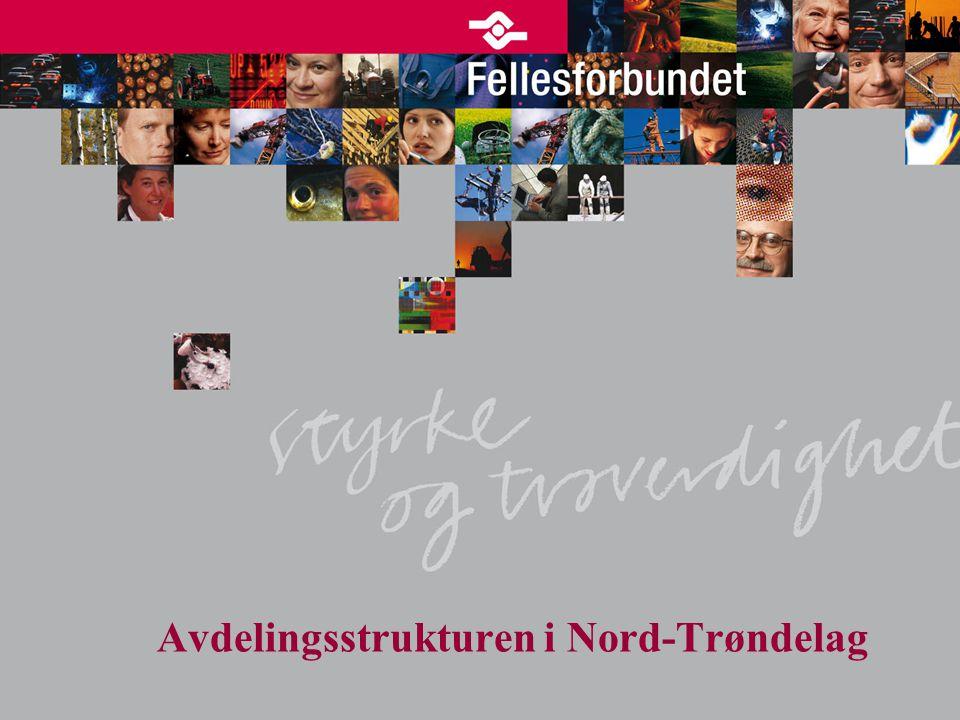 Avdelingsstrukturen i Nord-Trøndelag