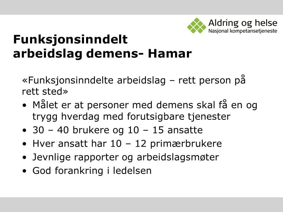 Funksjonsinndelt arbeidslag demens- Hamar «Funksjonsinndelte arbeidslag – rett person på rett sted» Målet er at personer med demens skal få en og tryg