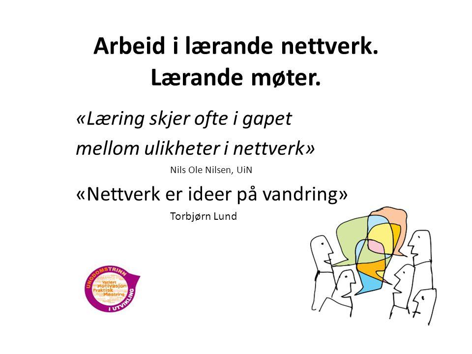 Arbeid i lærande nettverk.Lærande møter.