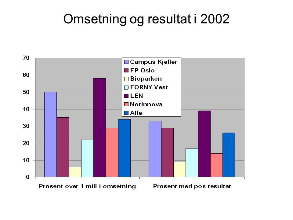 Omsetning og resultat i 2002