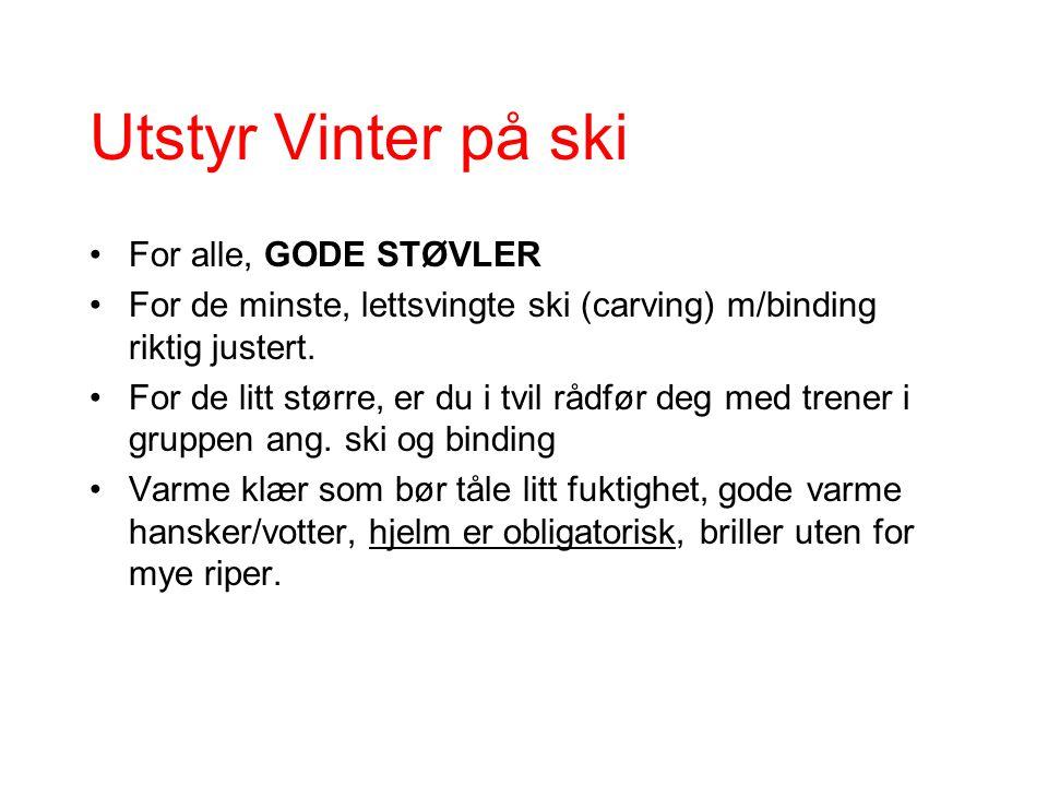 Utstyr Vinter på ski For alle, GODE STØVLER For de minste, lettsvingte ski (carving) m/binding riktig justert.