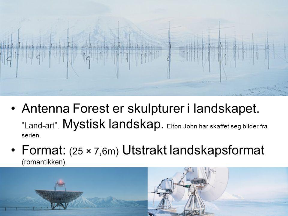 """Antenna Forest er skulpturer i landskapet. """"Land-art"""". Mystisk landskap. Elton John har skaffet seg bilder fra serien. Format: (25 × 7,6m) Utstrakt la"""