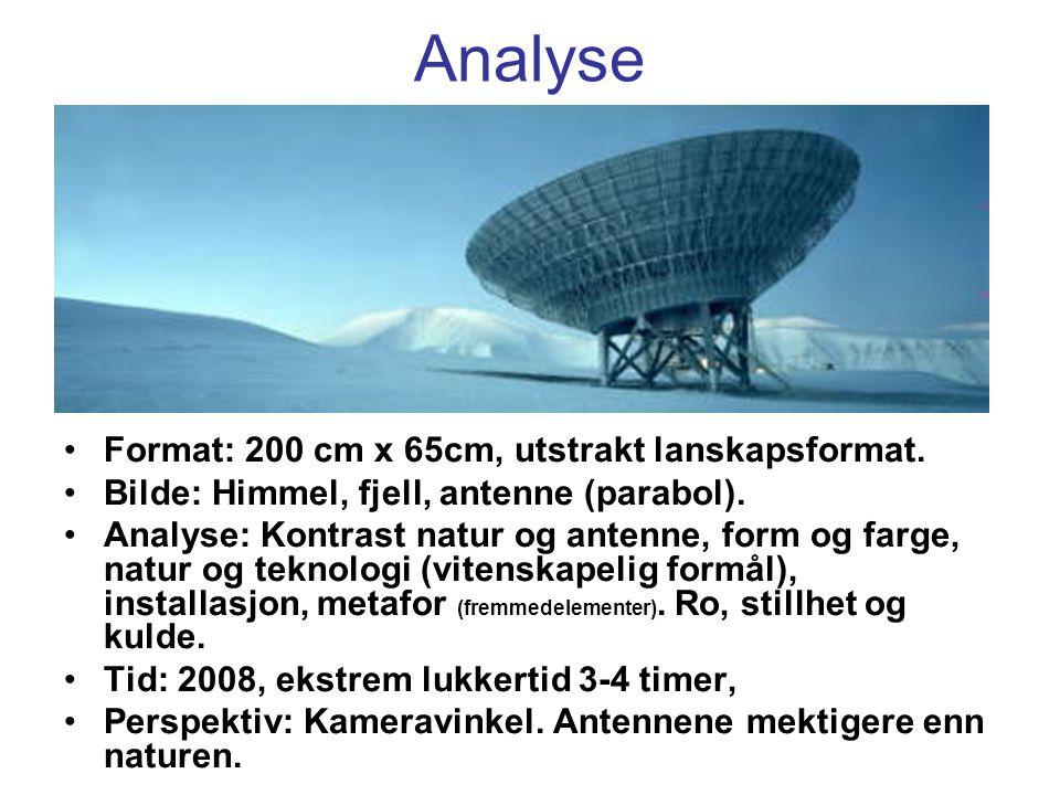 Analyse Format: 200 cm x 65cm, utstrakt lanskapsformat. Bilde: Himmel, fjell, antenne (parabol). Analyse: Kontrast natur og antenne, form og farge, na