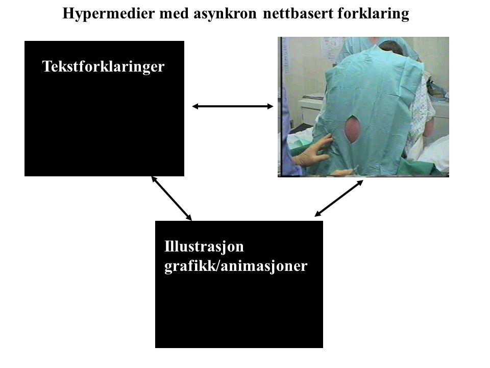 Tekstforklaringer Illustrasjon grafikk/animasjoner Hypermedier med asynkron nettbasert forklaring