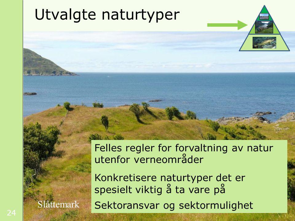 24 Utvalgte naturtyper Felles regler for forvaltning av natur utenfor verneområder Konkretisere naturtyper det er spesielt viktig å ta vare på Sektoransvar og sektormulighet Slåttemark