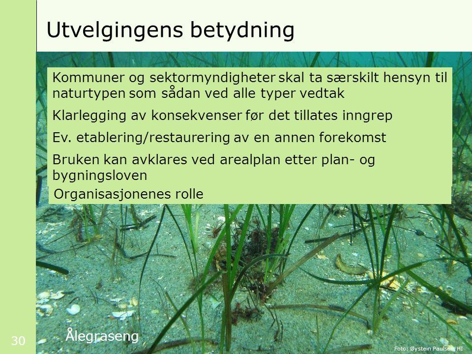 30 Utvelgingens betydning Kommuner og sektormyndigheter skal ta særskilt hensyn til naturtypen som sådan ved alle typer vedtak Klarlegging av konsekvenser før det tillates inngrep Ev.