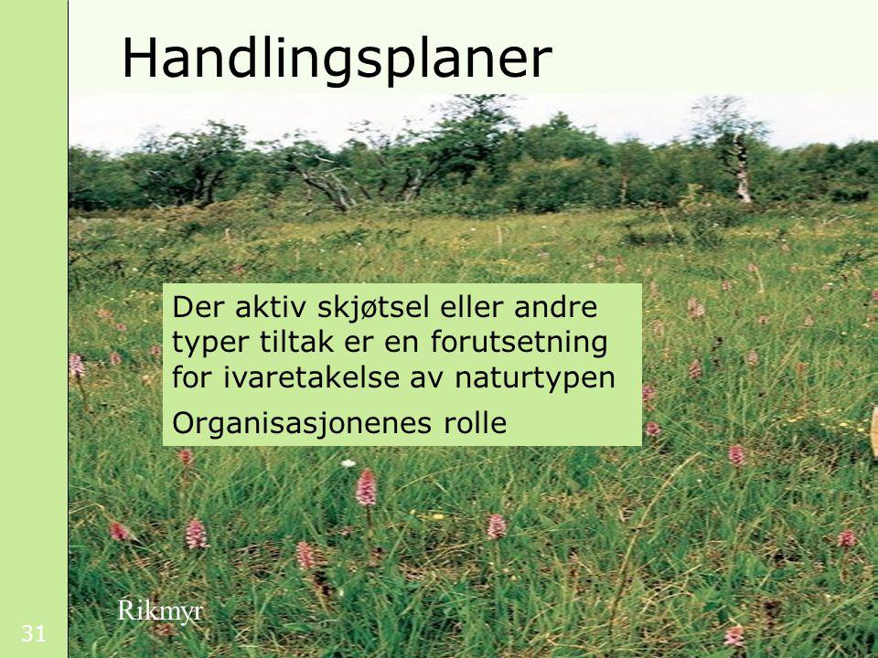 31 Handlingsplaner Der aktiv skjøtsel eller andre typer tiltak er en forutsetning for ivaretakelse av naturtypen Organisasjonenes rolle Rikmyr