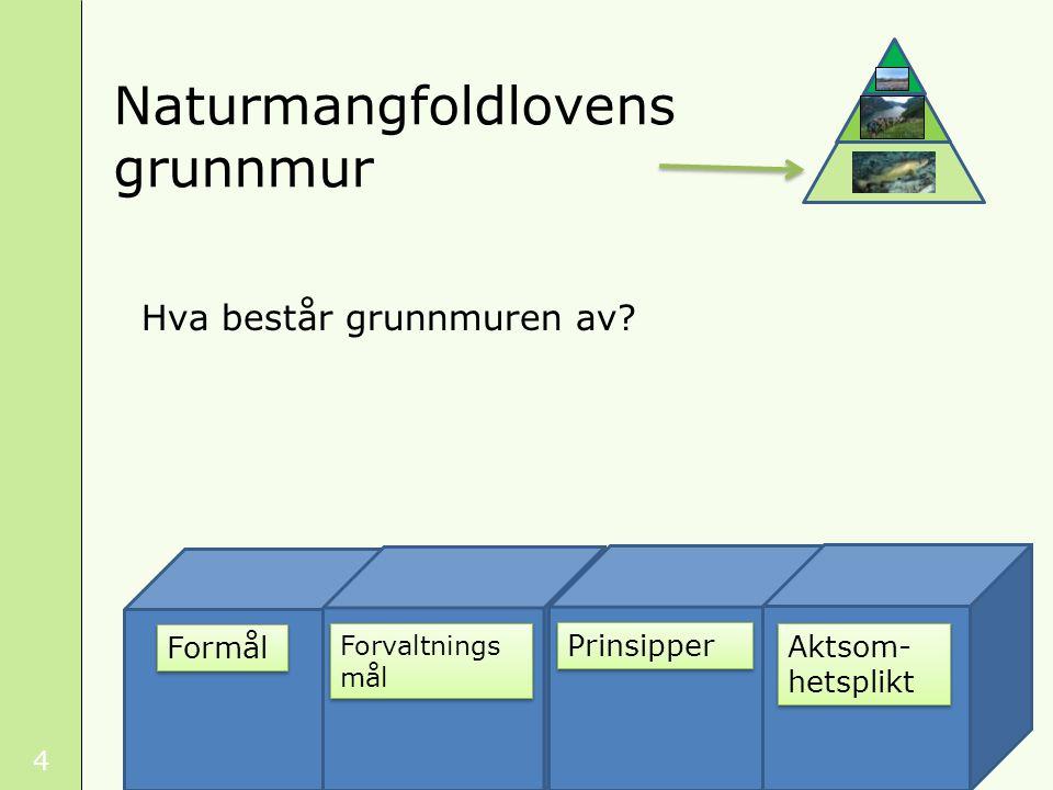 5 Grunnmurens betydning Grunnmuren utvides Vedtak bygger på felles grunnmur naturmangfoldloven sektorlov eller pbl beslutning