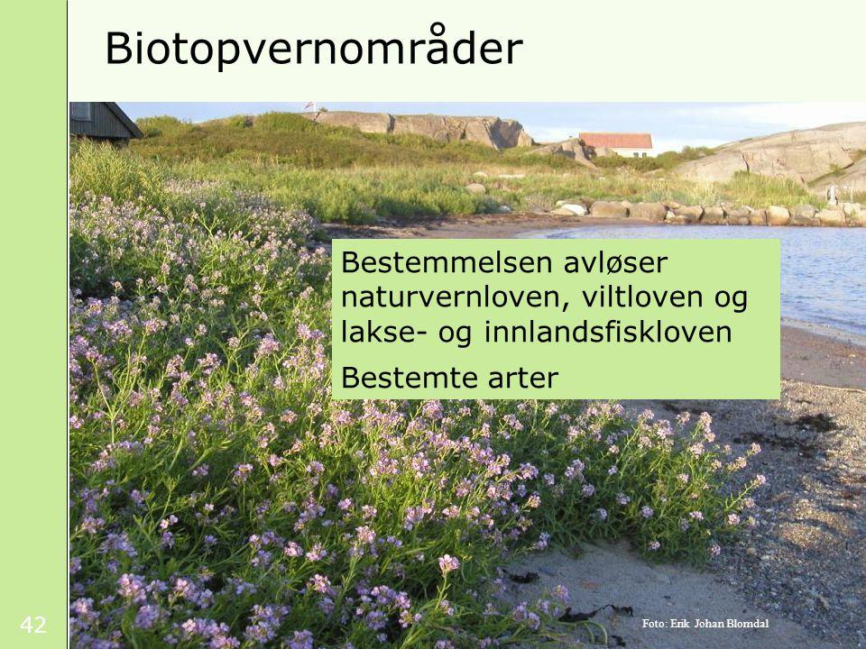 42 Biotopvernområder Bestemmelsen avløser naturvernloven, viltloven og lakse- og innlandsfiskloven Bestemte arter Foto: Erik Johan Blomdal