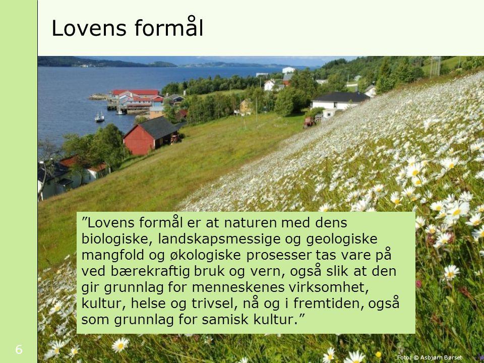 6 Lovens formål Lovens formål er at naturen med dens biologiske, landskapsmessige og geologiske mangfold og økologiske prosesser tas vare på ved bærekraftig bruk og vern, også slik at den gir grunnlag for menneskenes virksomhet, kultur, helse og trivsel, nå og i fremtiden, også som grunnlag for samisk kultur. Foto: © Asbjørn Børset