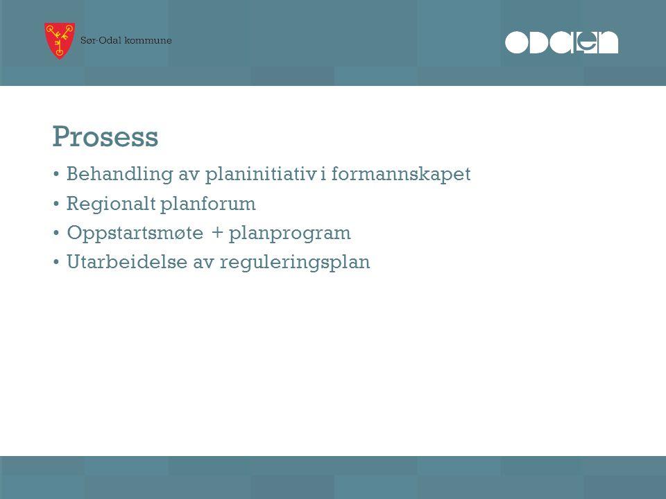 Prosess Behandling av planinitiativ i formannskapet Regionalt planforum Oppstartsmøte + planprogram Utarbeidelse av reguleringsplan