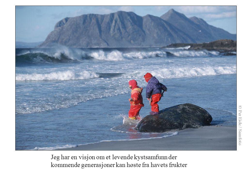 © Per Eide / Samfoto Jeg har en visjon om et levende kystsamfunn der kommende generasjoner kan høste fra havets frukter