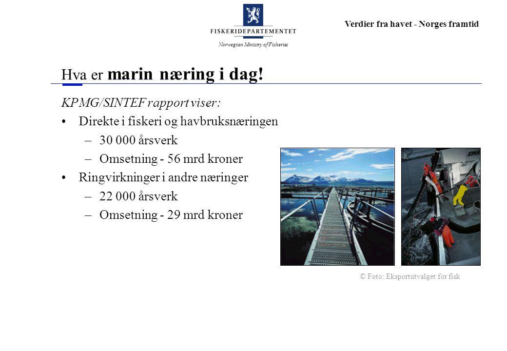 Norwegian Ministry of Fisheries Verdier fra havet - Norges framtid Hva er marin næring i dag! KPMG/SINTEF rapport viser: Direkte i fiskeri og havbruks