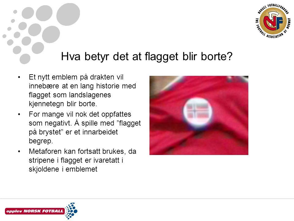 Hva betyr emblemet.Emblemet er bygget rundt en drage som er et viktig symbol fra norsk historie.