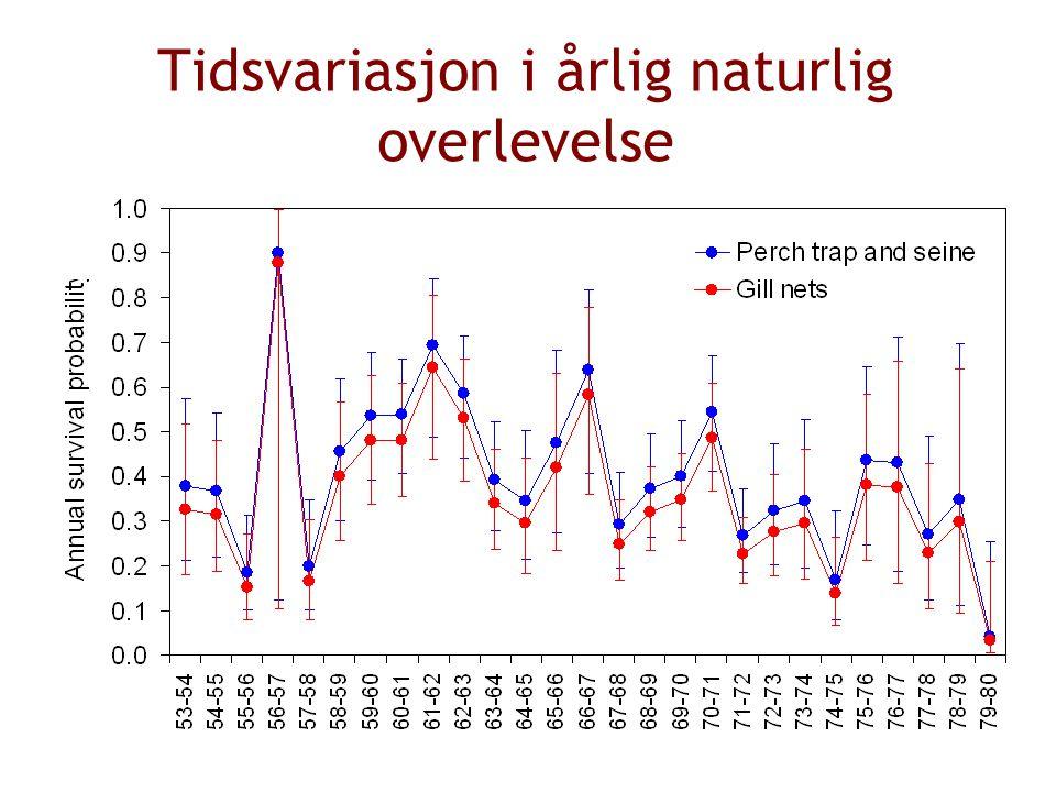 Tidsvariasjon i årlig naturlig overlevelse