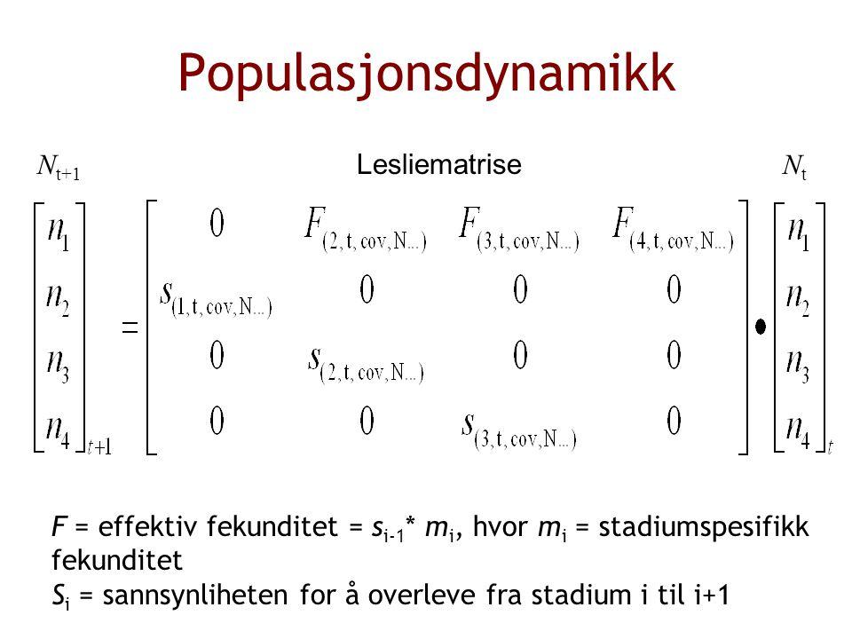Populasjonsdynamikk F = effektiv fekunditet = s i-1 * m i, hvor m i = stadiumspesifikk fekunditet S i = sannsynliheten for å overleve fra stadium i til i+1 Lesliematrise N t+1 NtNt Lesliematrise N t+1 NtNt