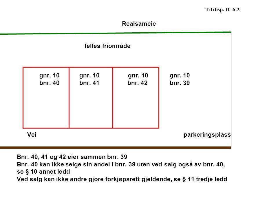 Til disp. II 6.2 Realsameie felles friområde gnr. 10 gnr. 10gnr. 10 gnr. 10 bnr. 40 bnr. 41 bnr. 42 bnr. 39 Veiparkeringsplass Bnr. 40, 41 og 42 eier