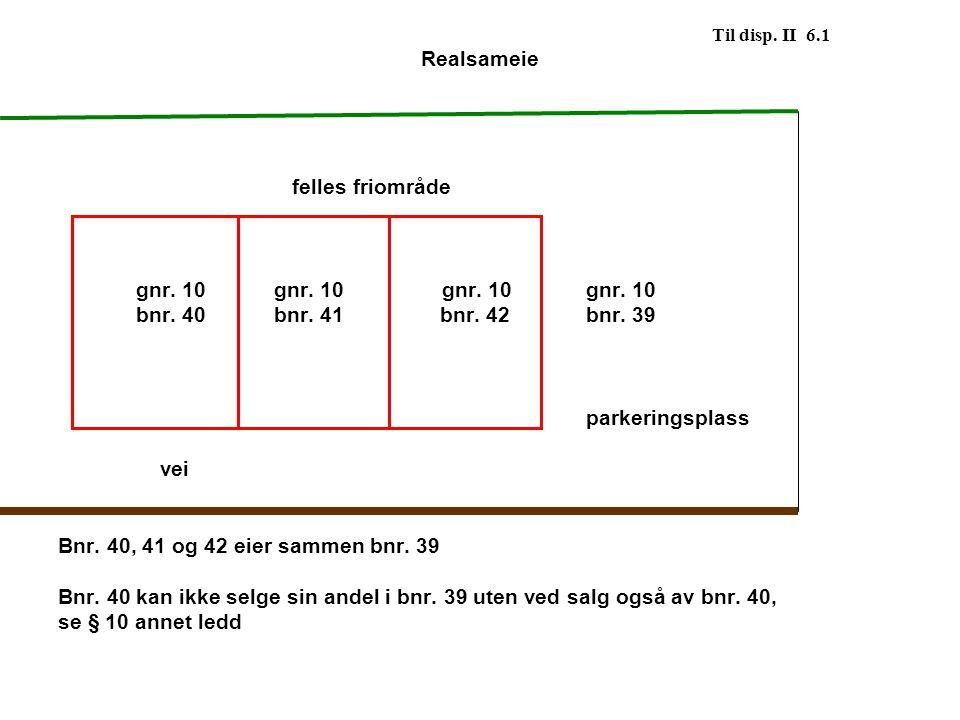 Til disp. II 6.1 Realsameie felles friområde gnr. 10 gnr. 10gnr. 10 gnr. 10 bnr. 40 bnr. 41 bnr. 42 bnr. 39 parkeringsplass vei Bnr. 40, 41 og 42 eier