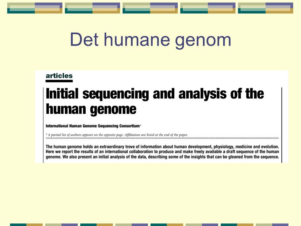 Flere proteiner fra samme gen (alternativ spleising) Menneske: 60 % av genene koder for mer enn ett protein Orm: 22 % av genene koder for mer enn ett protein