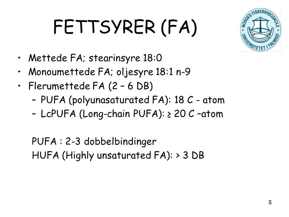 5 FETTSYRER (FA) Mettede FA; stearinsyre 18:0 Monoumettede FA; oljesyre 18:1 n-9 Flerumettede FA (2 – 6 DB) –PUFA (polyunasaturated FA): 18 C - atom –