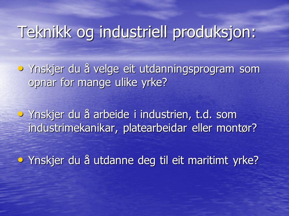 Teknikk og industriell produksjon: Ynskjer du å velge eit utdanningsprogram som opnar for mange ulike yrke? Ynskjer du å velge eit utdanningsprogram s