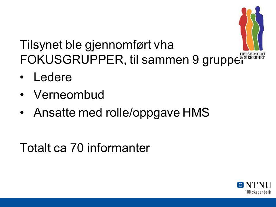 Tilsynet ble gjennomført vha FOKUSGRUPPER, til sammen 9 grupper Ledere Verneombud Ansatte med rolle/oppgave HMS Totalt ca 70 informanter