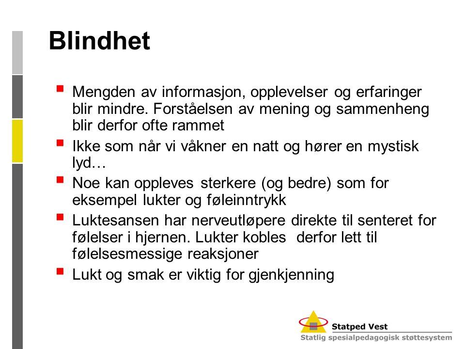 Blindhet  Mengden av informasjon, opplevelser og erfaringer blir mindre. Forståelsen av mening og sammenheng blir derfor ofte rammet  Ikke som når v