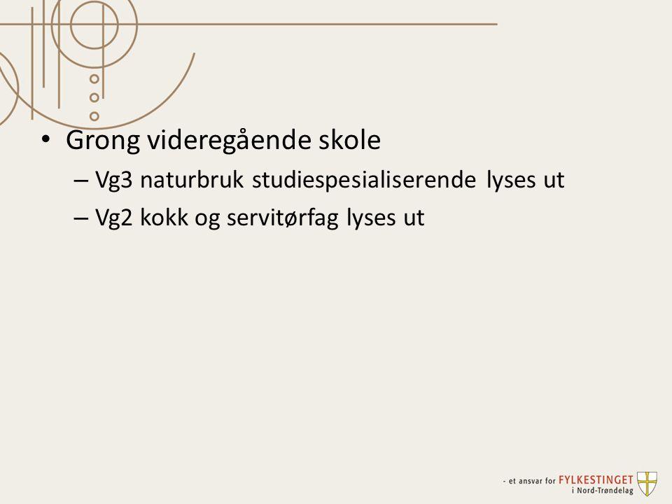 Kapasitet på Vg1 bygg og anleggsteknikk økes til 45 ved Verdal vgs, Steinkjer vgs og Olav Duun vgs.