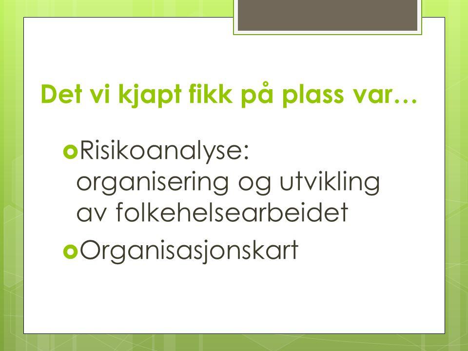 Det vi kjapt fikk på plass var…  Risikoanalyse: organisering og utvikling av folkehelsearbeidet  Organisasjonskart