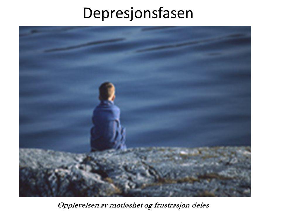 Depresjonsfasen Undertittel Opplevelsen av motløshet og frustrasjon deles