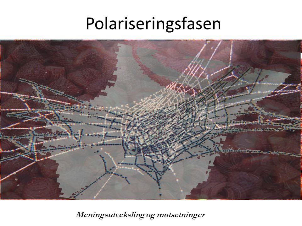 Polariseringsfasen Undertittel Meningsutveksling og motsetninger
