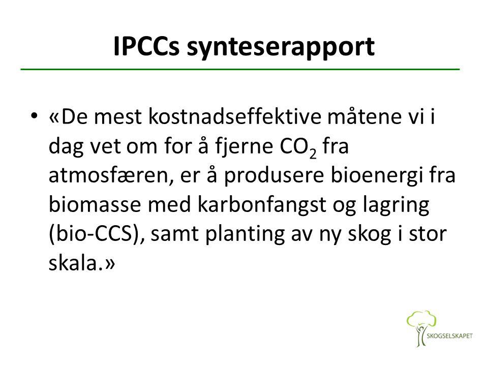 IPCCs synteserapport «De mest kostnadseffektive måtene vi i dag vet om for å fjerne CO 2 fra atmosfæren, er å produsere bioenergi fra biomasse med kar