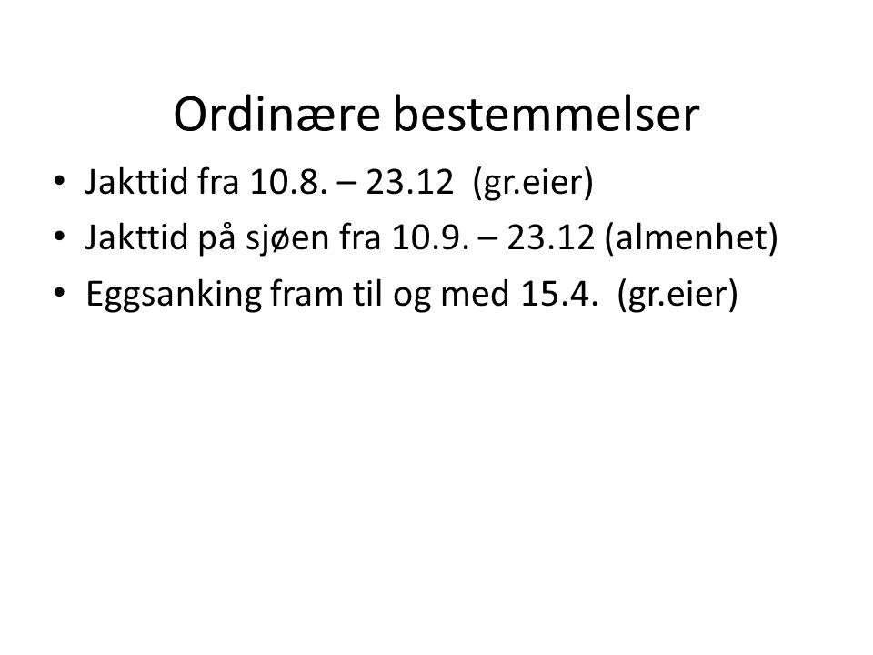 Ordinære bestemmelser Jakttid fra 10.8. – 23.12 (gr.eier) Jakttid på sjøen fra 10.9.