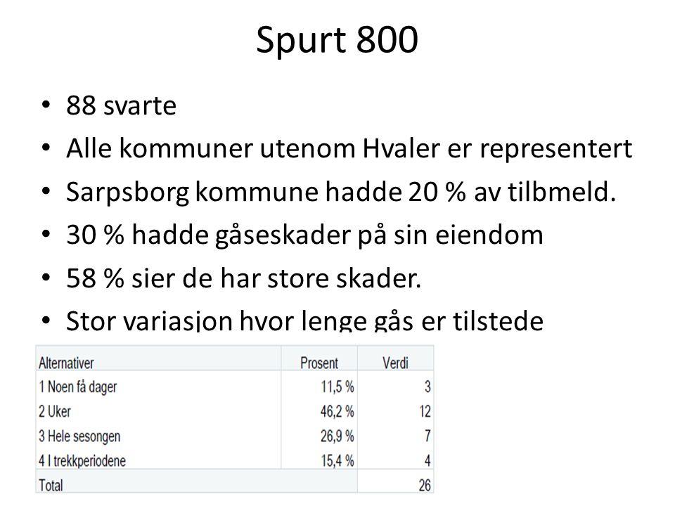 Spurt 800 88 svarte Alle kommuner utenom Hvaler er representert Sarpsborg kommune hadde 20 % av tilbmeld.