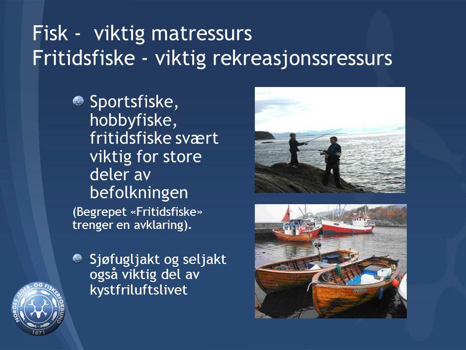 Fisk - viktig matressurs Fritidsfiske - viktig rekreasjonssressurs Sportsfiske, hobbyfiske, fritidsfiske svært viktig for store deler av befolkningen (Begrepet «Fritidsfiske» trenger en avklaring).