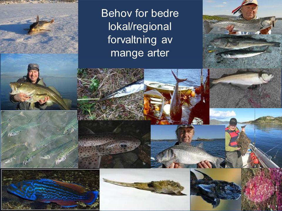Behov for bedre lokal/regional forvaltning av mange arter