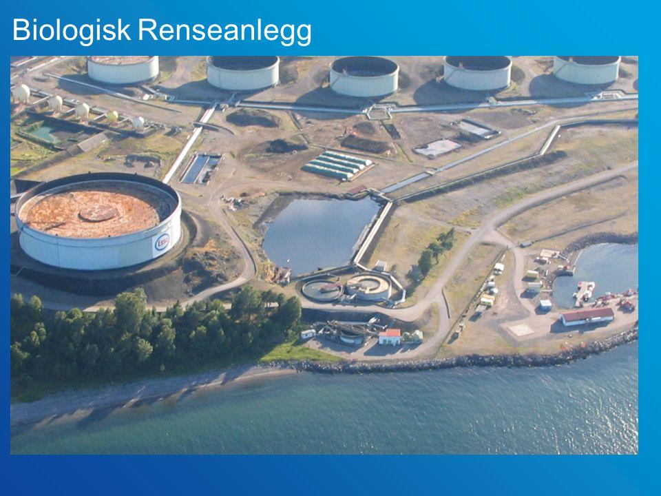 10 Avløpsvann Renseanlegg Sjø 83 400 m 3 /måned150 000 m 3 /måned 15 25 0 C Raffineri Drikkevann 50 000 m 3 /måned Vannverk Brønnvann 33 300 m 3 /måned Brønner