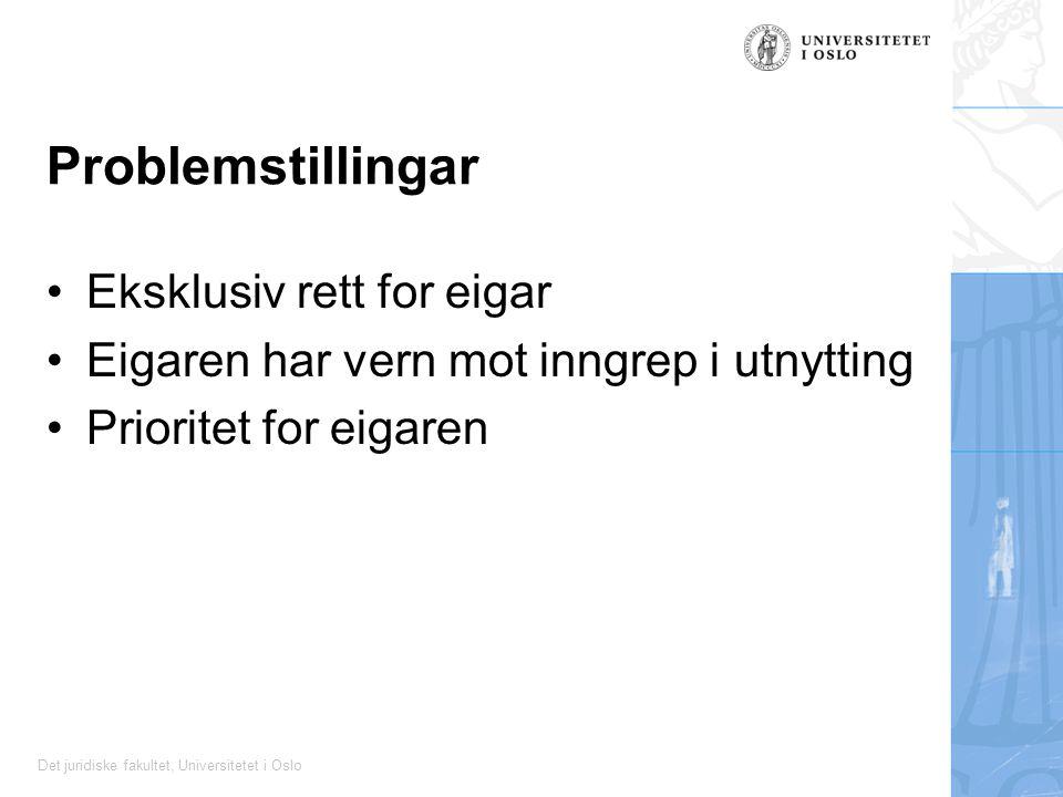 Det juridiske fakultet, Universitetet i Oslo Problemstillingar Eksklusiv rett for eigar Eigaren har vern mot inngrep i utnytting Prioritet for eigaren