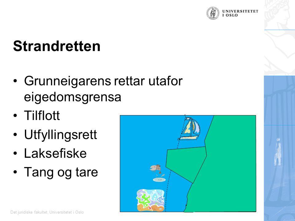 Det juridiske fakultet, Universitetet i Oslo Strandretten Grunneigarens rettar utafor eigedomsgrensa Tilflott Utfyllingsrett Laksefiske Tang og tare