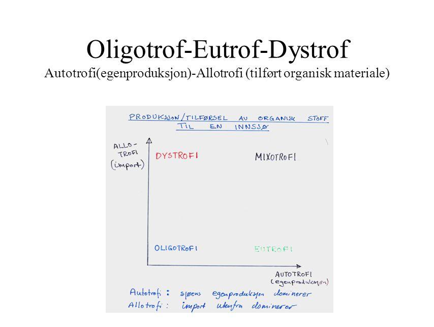 Oligotrof-Eutrof-Dystrof Autotrofi(egenproduksjon)-Allotrofi (tilført organisk materiale)