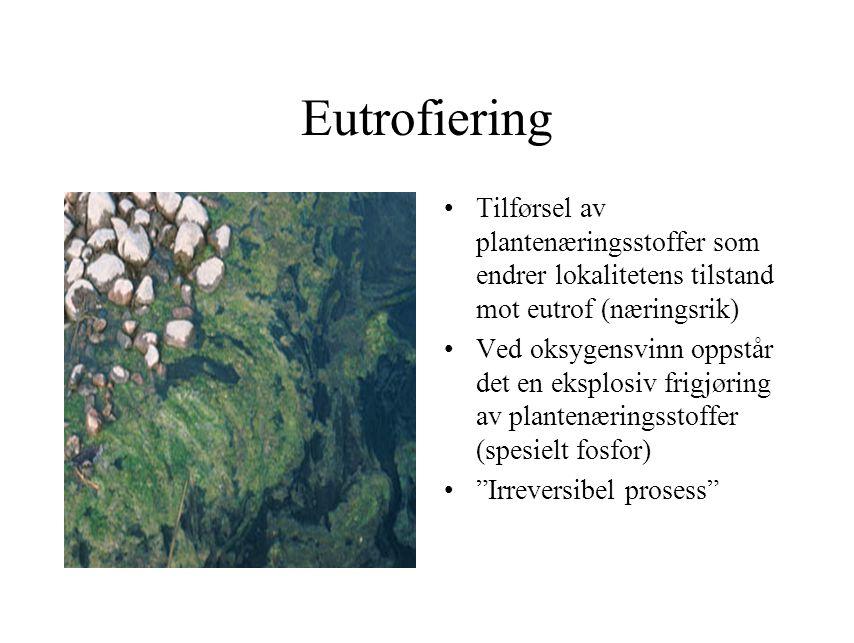 Eutrofiering Tilførsel av plantenæringsstoffer som endrer lokalitetens tilstand mot eutrof (næringsrik) Ved oksygensvinn oppstår det en eksplosiv frig