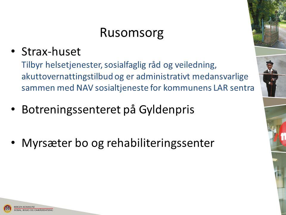 Rusomsorg Strax-huset Tilbyr helsetjenester, sosialfaglig råd og veiledning, akuttovernattingstilbud og er administrativt medansvarlige sammen med NAV