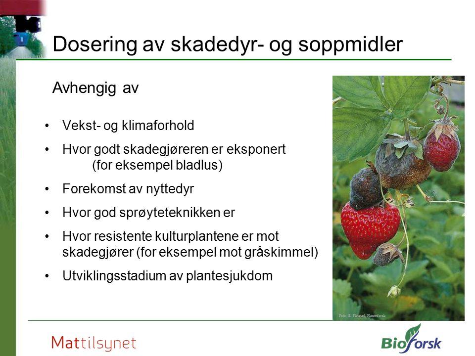 Dosering av skadedyr- og soppmidler Vekst- og klimaforhold Hvor godt skadegjøreren er eksponert (for eksempel bladlus) Forekomst av nyttedyr Hvor god