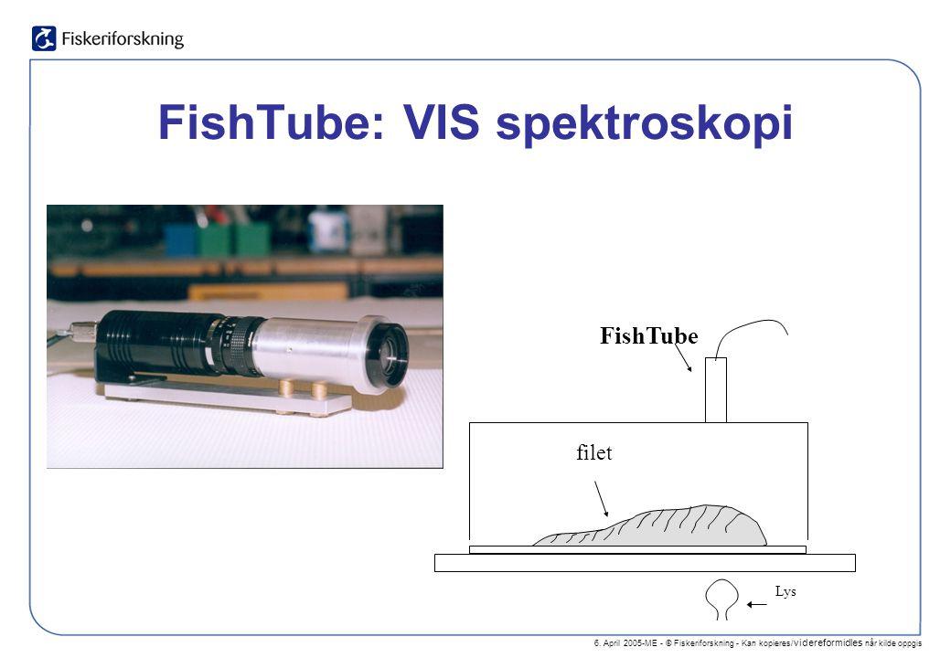 6. April 2005-ME - © Fiskeriforskning - Kan kopieres/ videreformidles når kilde oppgis FishTube: VIS spektroskopi FishTube filet Lys