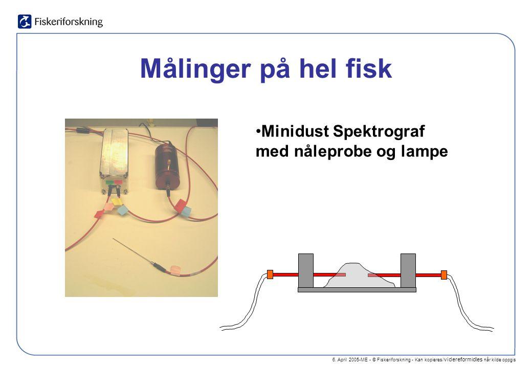 6. April 2005-ME - © Fiskeriforskning - Kan kopieres/ videreformidles når kilde oppgis Målinger på hel fisk Minidust Spektrograf med nåleprobe og lamp