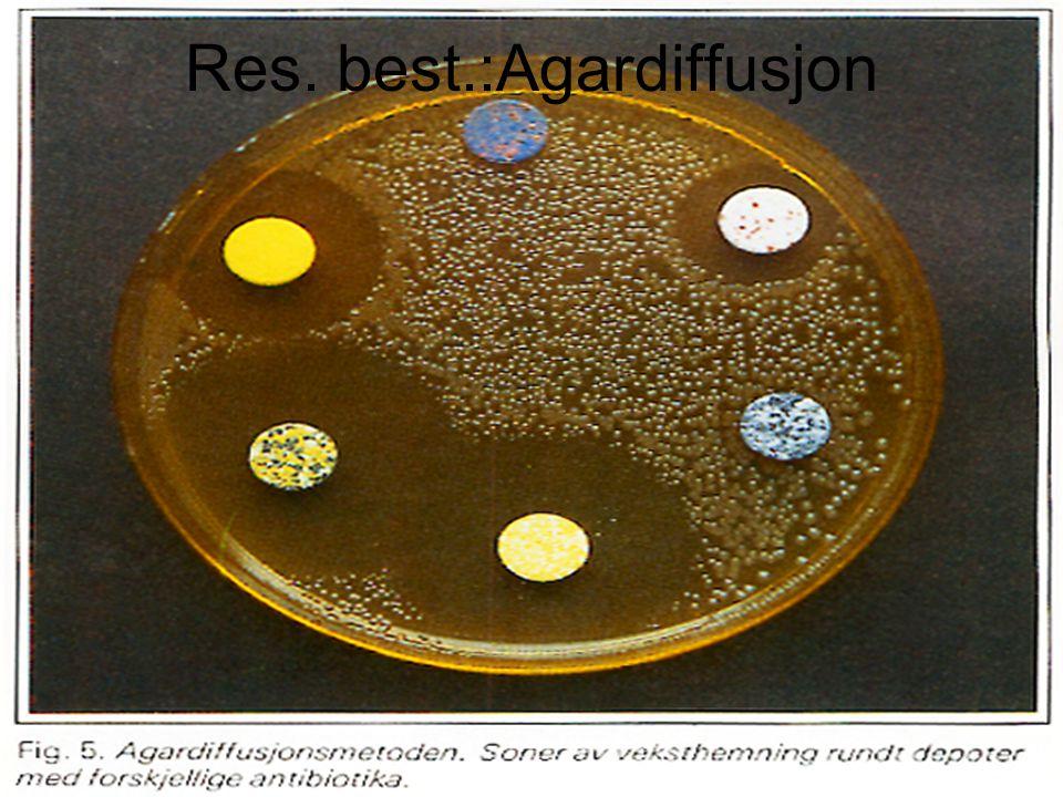 Scenario 3 forts Følsomheten hos vanlige patogener til et utvalg av antibiotika rapporteres årlig fra det Mikrobiol lab.