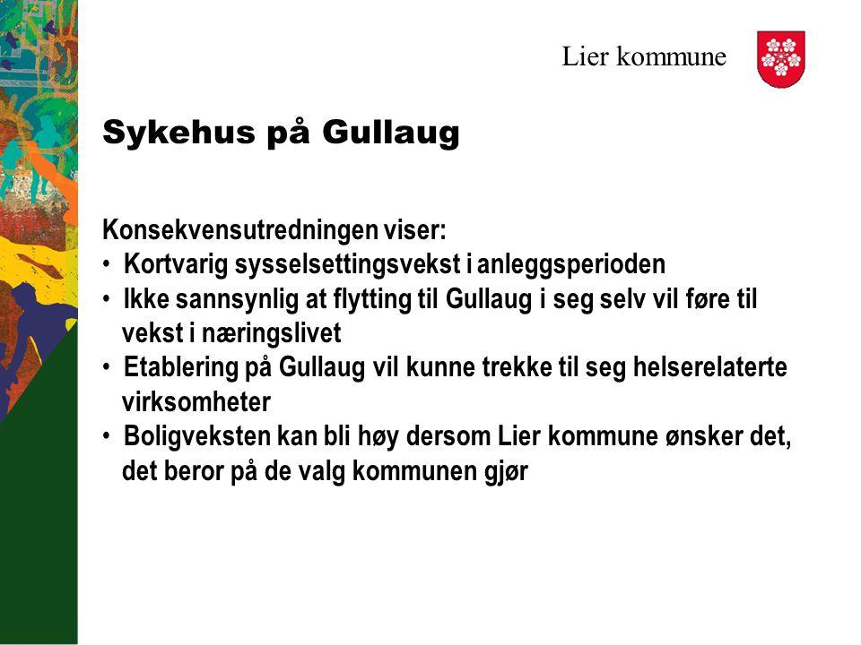 Lier kommune Sykehus på Gullaug Konsekvensutredningen viser: Kortvarig sysselsettingsvekst i anleggsperioden Ikke sannsynlig at flytting til Gullaug i