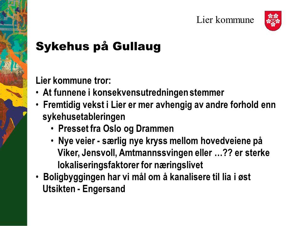 Lier kommune Sykehus på Gullaug Lier kommune tror: At funnene i konsekvensutredningen stemmer Fremtidig vekst i Lier er mer avhengig av andre forhold
