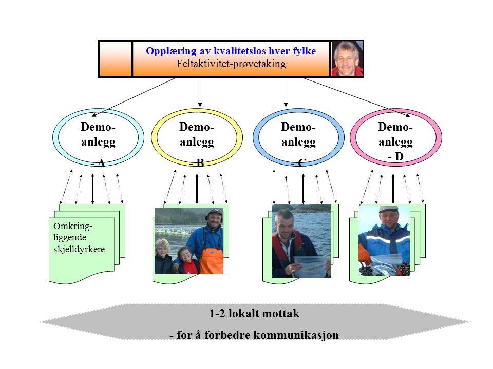 1-2 lokalt mottak - for å forbedre kommunikasjon Omkring- liggende skjelldyrkere Skjelldyrker med annen forpliktelse dyrkere Demo- anlegg - A Demo- anlegg - B Demo- anlegg - C Demo- anlegg - D Opplæring av kvalitetslos hver fylke Feltaktivitet-prøvetaking